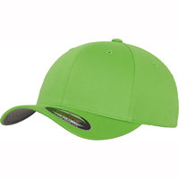 Flexfit fitted baseball cap (6277)